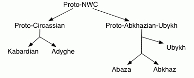 The linguistic and genetic mosaic of the Northwest Caucasus