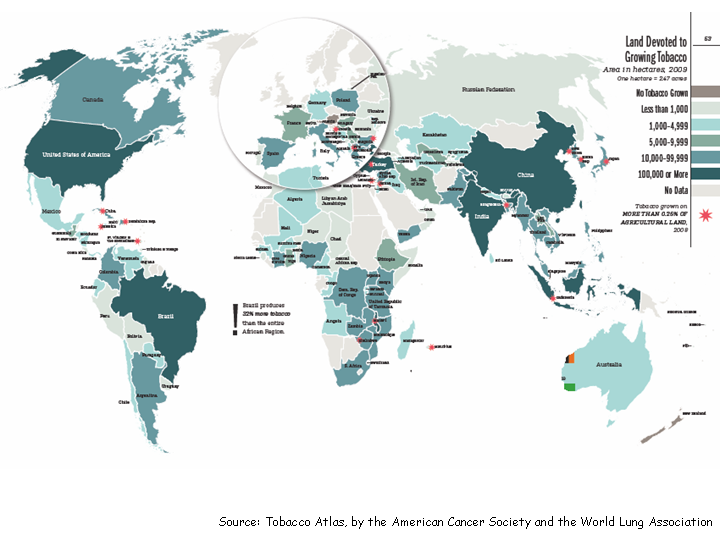 Global Patterns of Tobacco-Related Economic Issues