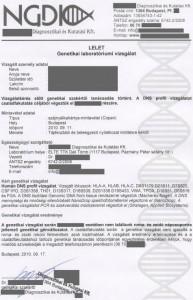 genetikai_lelet