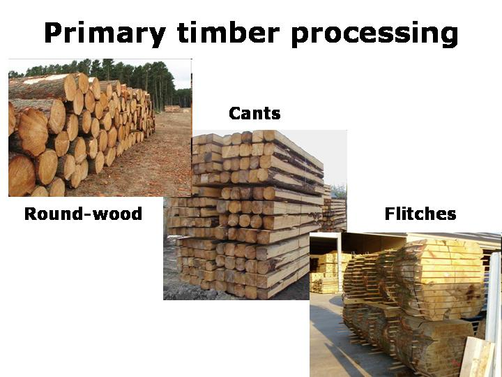 Concerns over Timber Processing in the Russian Far East